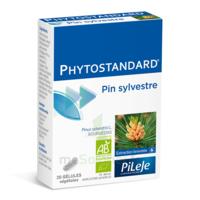 Pileje Phytostandard - Pin Sylvestre 20 Gélules Végétales à LE LAVANDOU