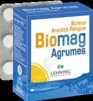 Lehning Biomag Comprimés à Croquer Agrumes B/90 à LE LAVANDOU