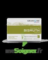 Granions De Bismuth 2 Mg/2 Ml S Buv 10amp/2ml à LE LAVANDOU