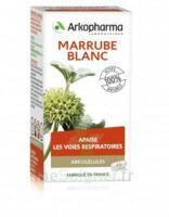 Arkogélules Marrube Blanc Gélules Fl/45 à LE LAVANDOU