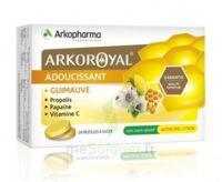 Arkoroyal Propolis Pastilles Adoucissante Gorge Guimauve Miel Citron B/24 à LE LAVANDOU
