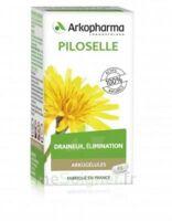 Arkogélules Piloselle Gélules Fl/45 à LE LAVANDOU