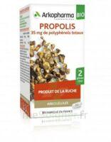 Arkogélules Propolis Bio Gélules Fl/45 à LE LAVANDOU