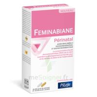 Pileje Feminabiane Périnatal 28 Gélules Blanches Et 28 Gélules Jaunes à LE LAVANDOU