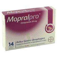 Mopralpro 20 Mg Cpr Gastro-rés Film/14 à LE LAVANDOU