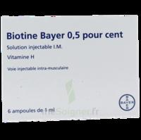 Biotine Bayer 0,5 Pour Cent, Solution Injectable I.m. à LE LAVANDOU