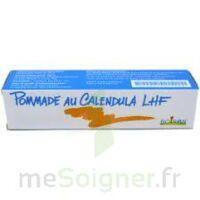 Calendula Lhf Pom T/20g à LE LAVANDOU