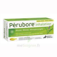 Perubore Caps Inhalation Par Vapeur Inhalation Plq/15 à LE LAVANDOU