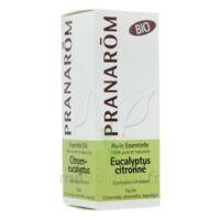 Huile Essentielle Eucalyptus Citronne Bio Pranarom 10 Ml à LE LAVANDOU