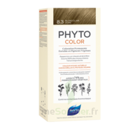 Phytocolor Kit Coloration Permanente 8.3 Blond Clair Doré à LE LAVANDOU