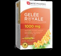 Forte Pharma Gelée Royale 1000 Mg Solution Buvable 20 Ampoules/10ml à LE LAVANDOU