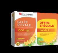 Forte Pharma Gelée Royale 1000 Mg Solution Buvable 2*b/20 Ampoules/10ml à LE LAVANDOU