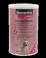 Biocanina Lait Poudre Maternisé B/400g à LE LAVANDOU