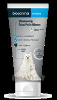 Biocanina Shampooing éclat Poils Blancs 200ml à LE LAVANDOU