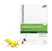 Aromaforce Caps Inhalation Bio B/15 à LE LAVANDOU