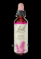 Fleurs De Bach® Original Pine - 20 Ml à LE LAVANDOU
