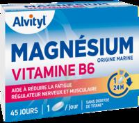 Govital Magnésium Vitamine B6 Comprimés B/45 à LE LAVANDOU