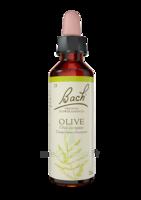 Fleurs De Bach® Original Olive - 20 Ml à LE LAVANDOU