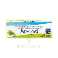 Boiron Arnigel Gel T(alumino-plastique)/45g à LE LAVANDOU