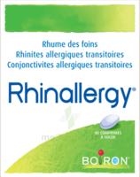 Boiron Rhinallergy Comprimés B/40 à LE LAVANDOU